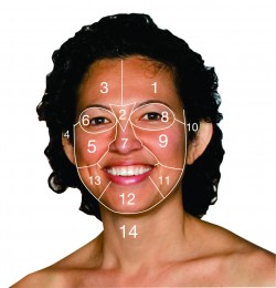 Logical Skincare | Face mapping on